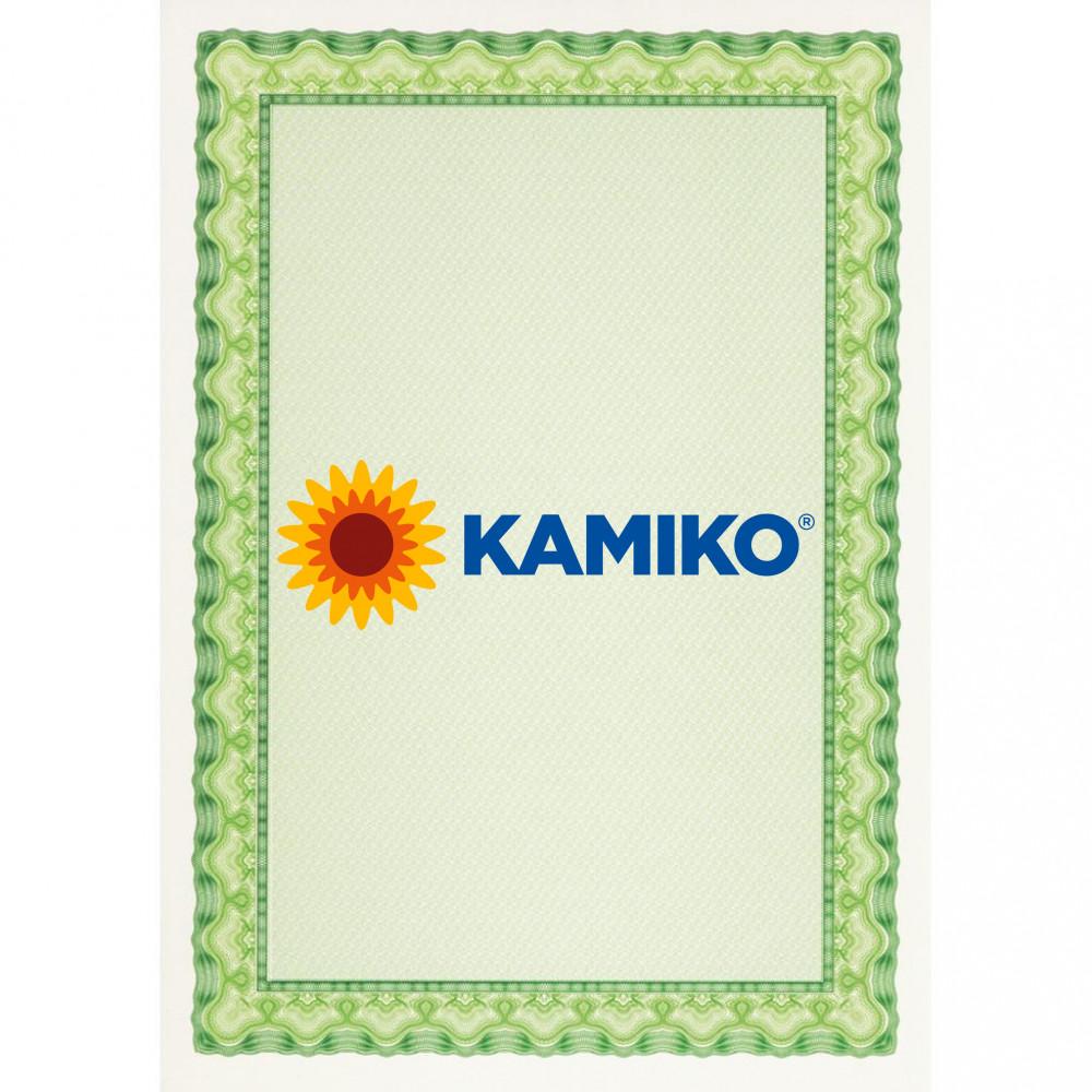 Certifikačný papier APLI A4 zelený 115 g, 25 hárkov