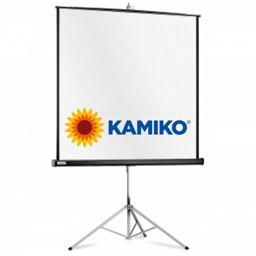 Prenosné plátno Professional 1:1 213x213cm