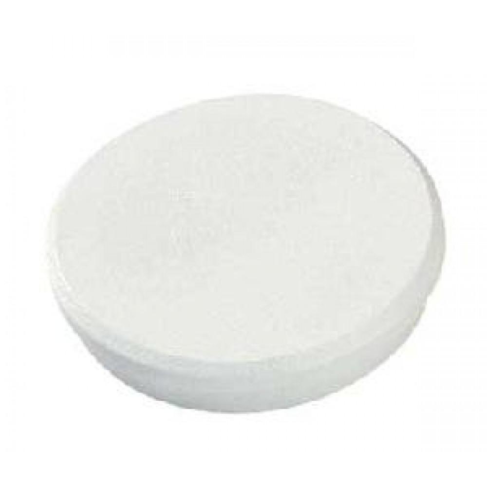 Magnet 24 mm biely