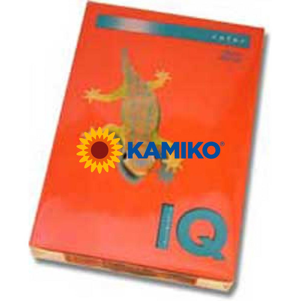 Kopírovací papier 80g A4 IQ color korálovo červený CO44