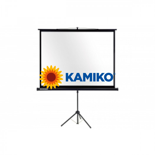Prenosné plátno ECONOMY 1:1 180x180 cm