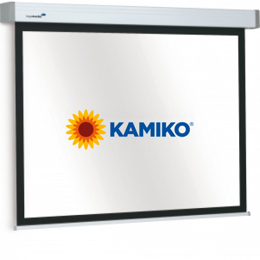 Nástenné elektrické plátno Professional 4:3 183x240cm