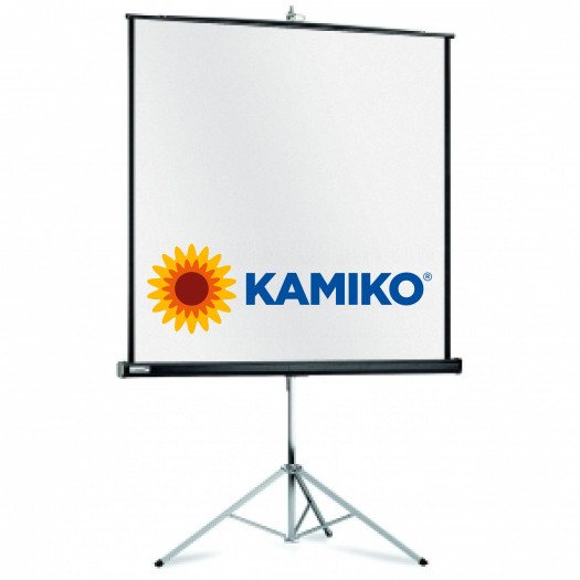 Prenosné plátno Professional 4:3 185x244cm